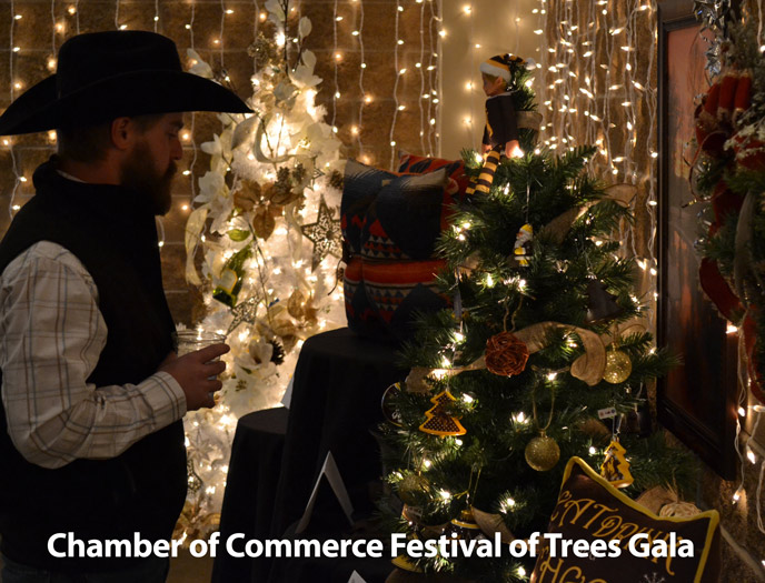 Chamber of Commerce Festival of Trees 2017